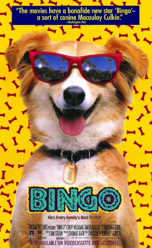 Bingo: Esperto pra Cachorro