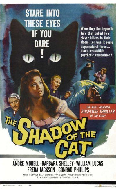 A Sombra do Gato
